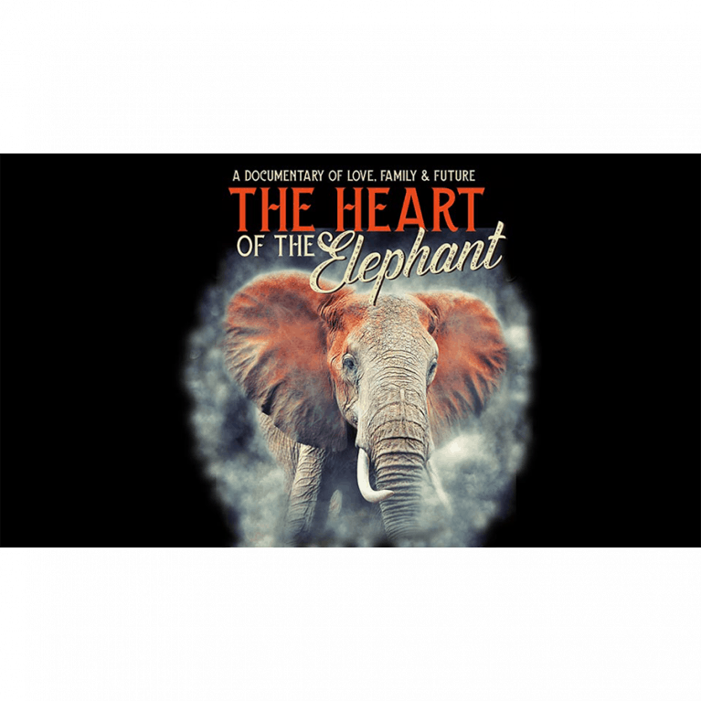 The Heart of the Elephant - VOD